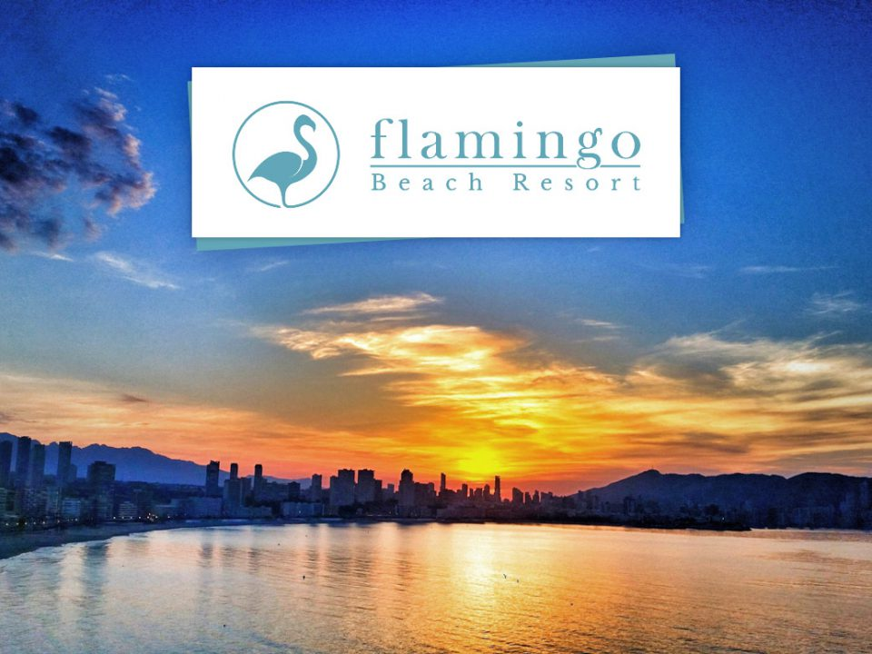 hotel flamingo beach benidorm